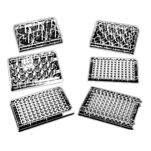 Evergreen Scientifics 333-8000-01F Polystyrol-Mikroplatte mit Deckel, behandelt, flacher Boden, steril, 96 Mulden, 100 Stück