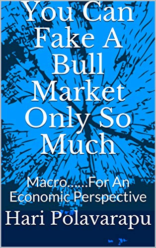 You Can Fake A Bull Market Only So Much: Macro……For An Economic Perspective (English Edition)