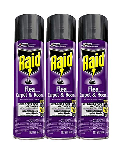 Raid Flea Killer Carpet and Room Spray, 16 OZ (Pack - 3)