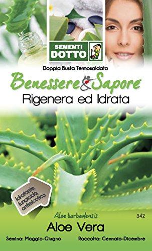 Sdd DT Bn_Aloe Vera Seme, Bianco, 0.02x20.2x12.2 cm