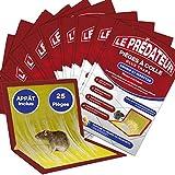 Le prédateur – trampa de pegamento para ratones, ratas, insectos y lagartos, 25 placas de glue adhesivo extra grande, eficaz, no tóxico y respetuoso con el medio ambiente – cebo incluido