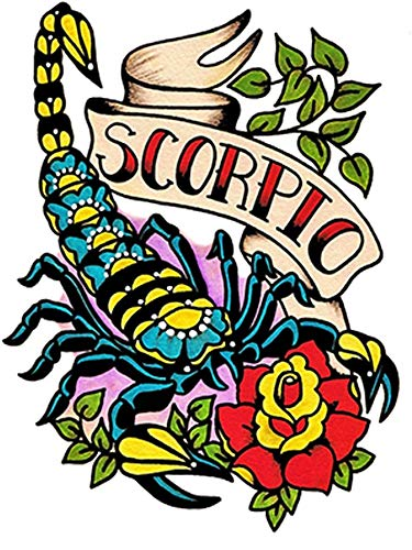 Sterrenbeeld dier symbolen tatoeages 10 x 8 cm multicolor
