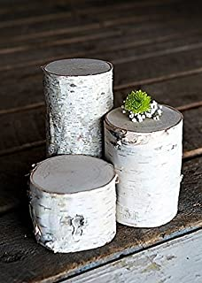 White Birch Pillars- Set of 3: 3, 5, and 7 inch Tall x 3.5-5 inch Diameter