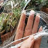 NIANXINN Lona Transparente con Ojales,para Muebles de Jardín Toldos,Piscina,Automóvil,Camión,Impermeable Resistente a la Rotura,Sol,Polvo,PVC Lona Transparente Cortina,300G/M²,0.3mm (3x6m/10x20ft)