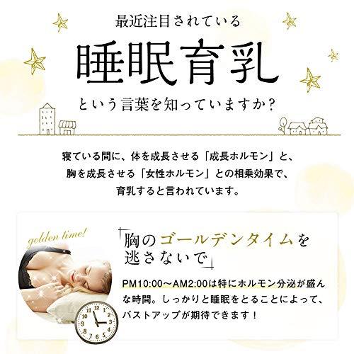 (へヴンジャパン)HEAVENJapan夜寄るブラ+plusナイトブラノンワイヤーブラジャーパッドなし(M,ローズ)