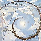 ナポレオンフィッシュと泳ぐ日(完全生産限定盤)(アナログ盤) [Analog]