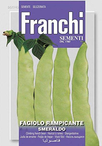 Bohnensamen - Stangenbohne Smeraldo von Franchi Sementi