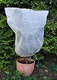 Vilmorin - 5 Housses hivernage 0,8x0,8m en polypropylène 30g/m² - Blanc - Facile d'utilistion - protège du Froid Vos végétaux