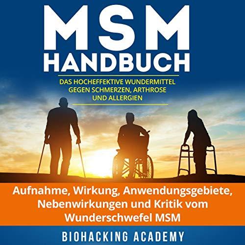 MSM Handbuch Titelbild