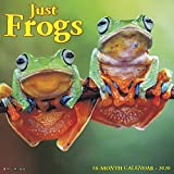 Frogs 2020 Wall Calendar