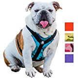 Bulldog Grade Harness for English-American-French Bulldogs - Custom Fit, No Pull, Reflective Vest Harnesses for Your Bully (XL, Bully Blue Camo)