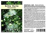 Seedeo Echte Myrte (Myrtus communis) 30 Samen