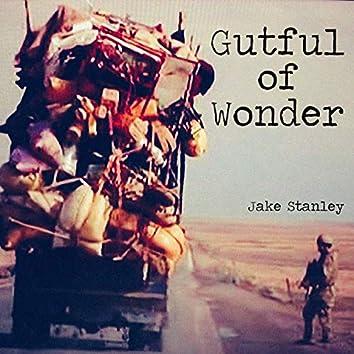 Gutful of Wonder