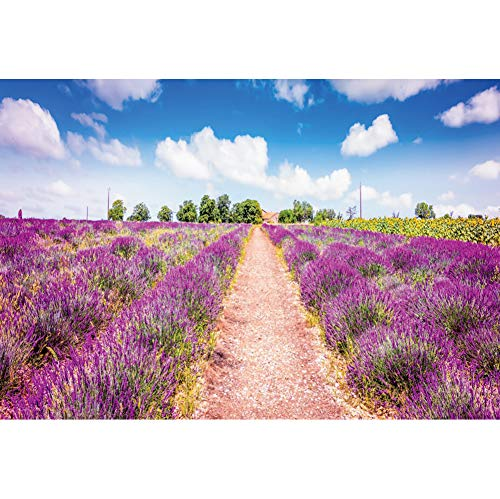 OERJU 9x6ft Lavender Field Backdrop Blooming Purple Flowers Pathway Blue Sky White Cloud Outdoor Countryside Theme Wedding Background for Photography Rustic Party Photo Background
