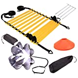 Dogggy Speed Agility Training Set, Includes 1 Resistance Parachute, 1 Agility Ladder, 4 Steel Stakes, 4 Disc...