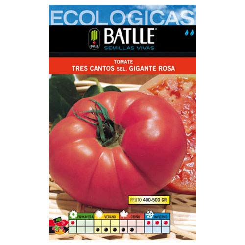 ScoutSeed Semillas ecológicas - Tomate gigante Rosa Tres Cantos (2g)
