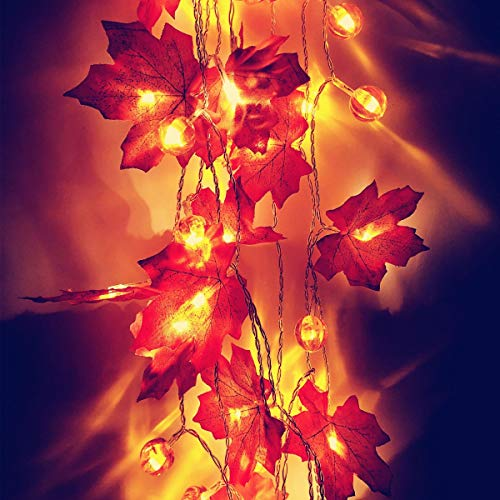 Thanksgiving Pumpkin Maple Leaf Light Fall String Lights 9.8ft 30 LED Battery Operated Autumn Decor Lighted Garland for Thanksgiving Christmas Holiday Home Party Indoor Outdoor Decor (1 Pack)