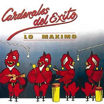 Lo Maximo '89