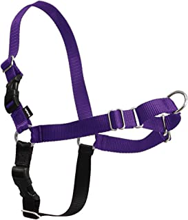 PetSafe Easy Walk Dog Harness, No Pull Dog Harness, Deep Purple/Black, Small