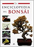 La Enciclopedia del Bonsái (Enciclopedias Libsa) de Raquel Morales (3 feb 2008) Tapa dura