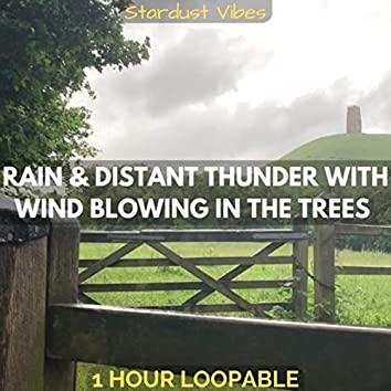 Rain & Distant Thunder with Wind Blowing in the Trees: One Hour (Loopable)