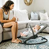 Product Image of the Baby Delight Deluxe Portable Rocker Bouncer, Aura
