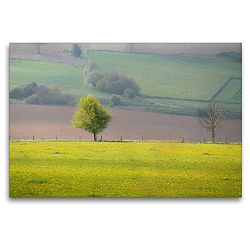 CALVENDO Premium Textil-Leinwand 120 x 80 cm Quer-Format Der Frühling hält Einzug, Leinwanddruck von Markus Van Hauten