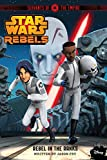 Star Wars Rebels: Servants of the Empire: Rebel in the Ranks