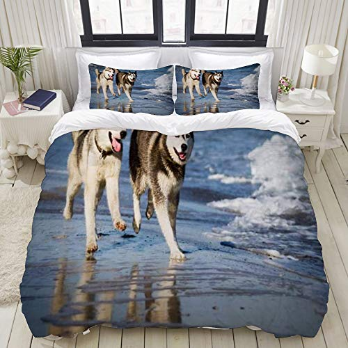 Juego de fundas de edredón,Trineo de perros esquimales caninos siberianos árticos en la playa Animales Vida salvaje Belleza al aire libre,Fundas Edredón 135 x 200 cm+1 Funda de Almohada 40x75cm