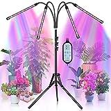 KEAWEO Pflanzenlampe LED, Pflanzenlicht mit Stände, 40W Pflanzenleuchte, Grow Lamp Tripod einstellbar, 4 Heads 80 LEDs Wachsen licht, Vollspektrum Wachstumslampe für Zimmerpflanzen mit Zeitschaltuhr