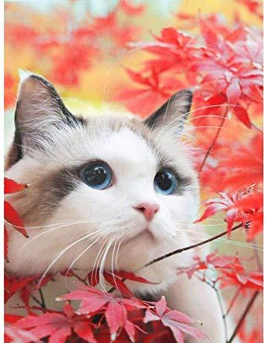 SYKKYS 1 000 bitar pussel för lönn katt djur för barn i åldern 12 och uppåt för barn utbildning