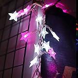 SFOUR フェアリーライト電飾led イルミネーションライト 電池式 クリスマス 飾りツリー led電球庭 ライト屋外防水イルミ室内USB枕元 ライト ledに適してベッドルーム アウトドア 結婚式 庭対応 誕生日 (ウォームホワイト, 6M_40LED) (星型 ピンクと白)