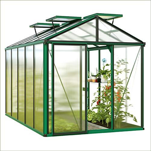 GFP DIAMAS Light Invernadero, invernadero, invernadero, caseta de tomates, bancal, invernadero de tomates, invernadero de tomates, caseta de tomates, invernadero de jardín, invernadero de láminas, bancal, casa de cristal