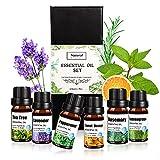 Aceites Esenciales Naturales,LITZEE 6x10ml Aceites Esenciales Aromaterapia para Humidificador Difusor, Set de Aceites Fragante de Lavanda, Naranja Dulce, árbol de té, Eucalipto, Hierba de Limón, Menta