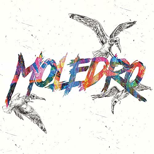 Moledro