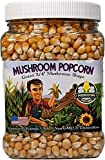 Mushroom Popcorn Kernels by Princeton Popcorn – Farm Grown, Non GMO, Gluten Free UnPopped, Ball Shaped, Old Fashion Popcorn – Pops Extra Large, Popping Corn for Air Popper & Stovetop 32oz