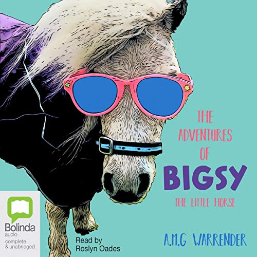 The Adventures of Bigsy - The Little Horse cover art