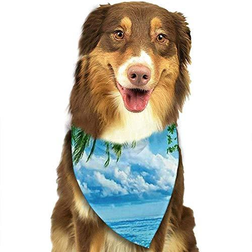 YAGEAD Pañuelo para Perros Puppy and Pet Bandanas, Nature Scenery Tropical Blue Sea Ocean Beach Pet Scarf