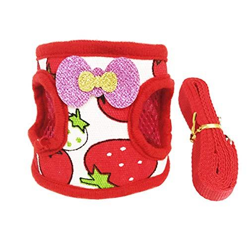Hinzonek Haustiergeschirr Leinen Set für Kleine Kaninchen Chinchilla Verstellbare Trainingsleine Wanderleine Weste