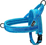 Didog Soft Flannel Padded Dog Vests Harnesses, Escape Proof / Quick Fit Reflective Dog Strap Harness,Easy for Training Walking,Blue M Size