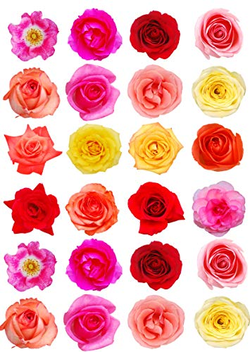 24 rosas de colores mixtos para decoración de tartas de papel de oble