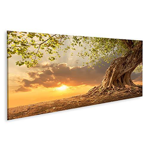 Bild auf Leinwand Wunderschöner Alter Baum bei Sonnenuntergang in leuchtendem Orange Bilder Wandbild Poster Leinwandbild