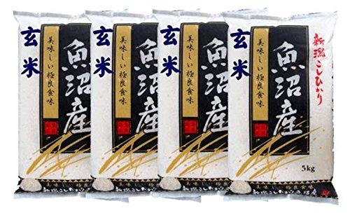 新潟県魚沼産 玄米 石抜き処理済 コシヒカリ 20kg(5kg×4袋) 令和2年産