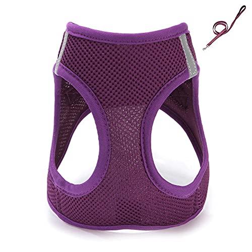 Conjunto de arnés y correa ajustable para mascotas para perros pequeños, cachorros y gatos, entrenamiento al aire libre y correr XS
