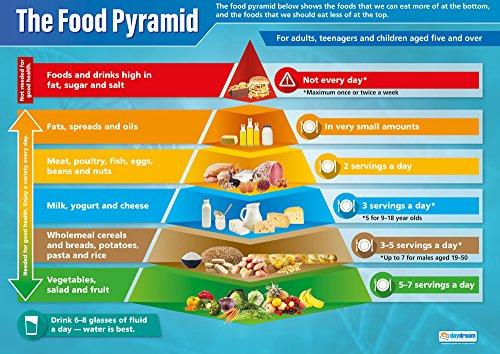 Piramide alimentare | Poster scientifico | Carta lucida misura 850 mm x 594 mm (A1) | Grafici scientifici per l'aula | Grafici didattici di Daydream Education