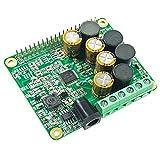 RPI HiFi AMP HAT TAS5713 Amplifier Audio Module 25W Class-D Power Sound Card Expansion Board for Raspberry Pi 4 3 B+ Pi Zero Nichicon Capacitor