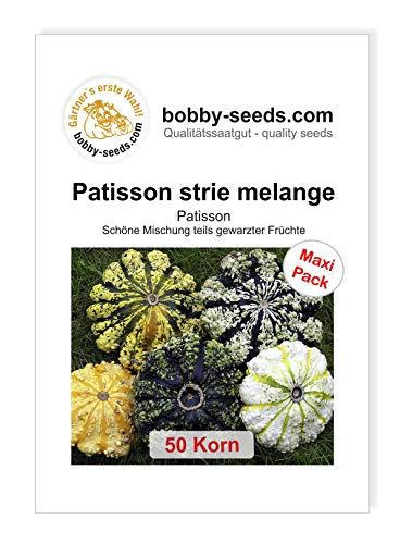 Patisson strie melange Kürbissamen von Bobby-Seeds, 50 Korn