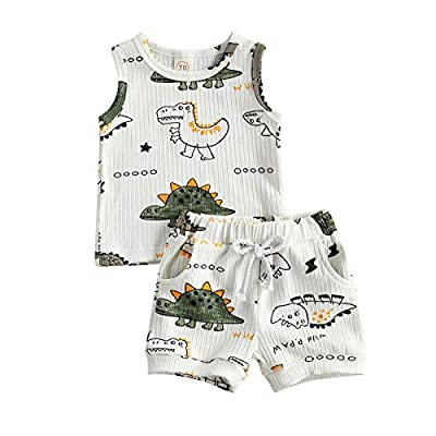 2pcs Summer Newborn Baby Boy Clothes Cute Dinosaur Letter Print Ribbed Sleeveless Tops Shorts Infant Boy Outfit Set by Ledy Champswiin