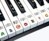 BASTON Piano Keyboard Stickers for Beginners 88/76/61/54/49/37 Keys - Removable, Transparent Piano Stickers - Perfect for Kids and Animal Lovers, Big Letters, Easy to Install - with Cleaning Cloth