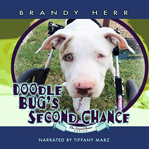 Doodle Bug's Second Chance audiobook cover art